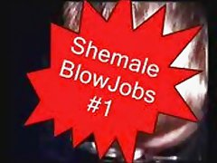 Shemale Blowjobs